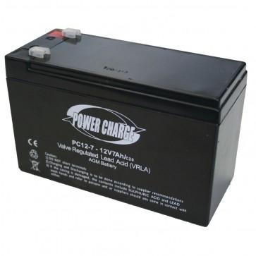 GardenPro Backpack Sprayer 12V Battery