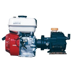 Bertolini PA330 Pump And Honda Motor