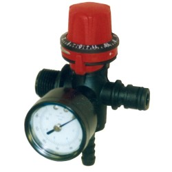 Threaded Pressure Regulator And Gauge